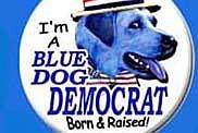 The Democratic Hope