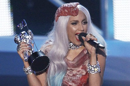 Lady Gaga's VMA raw meat dress set the world atwitter.