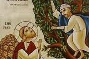 Zacchaeus climbs the tree to see Jesus