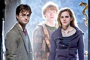 "Harry, Hermione and Ron are back in ""Harry Potter and the Deathly Hallows"""