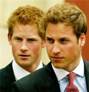 Prince Harry planned Prince William's bachelor party
