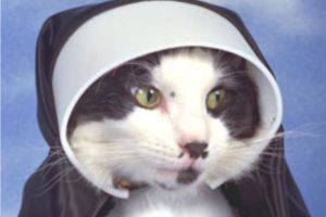 Make your pet Catholic in honor of St. Francis of Assisi