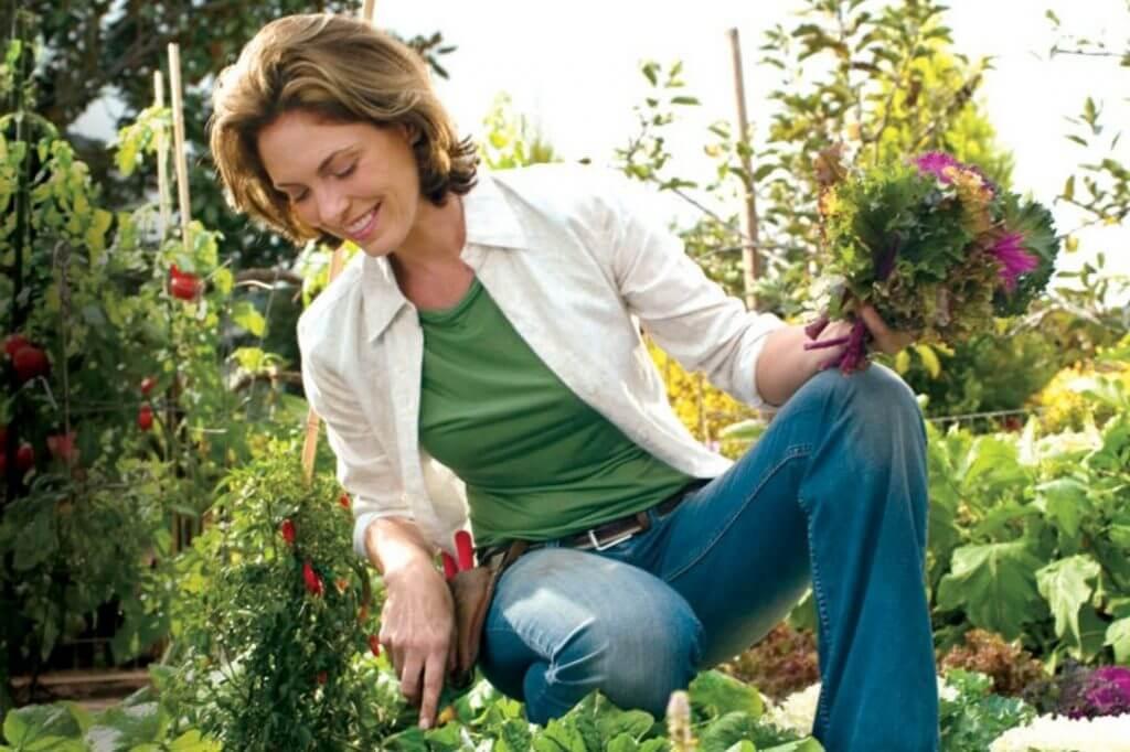 Spirituality & gardening: Does your garden need weeding?