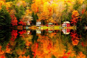 Autumn glory: The first day of autumn is today, Friday, Sept. 23