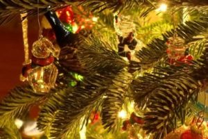 Christmas after divorce: Focus on happy memories