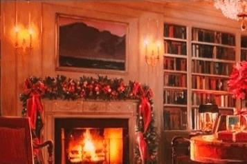 Sarah Palin criticized President Obama's Christmas card, featuring his dog Bo