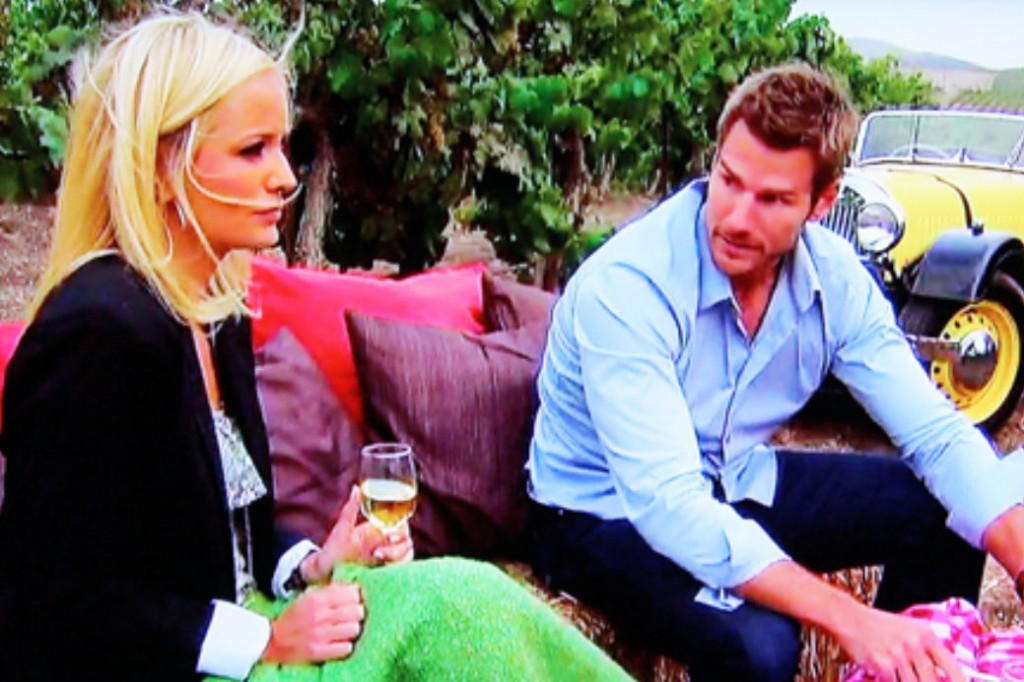 Was Emily Maynard too introverted for Bachelor Brad Womack, the party boy?