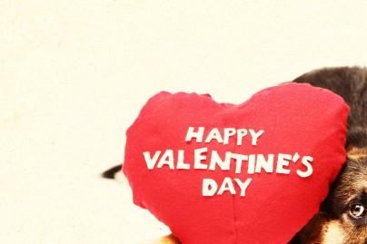 Valentine Small