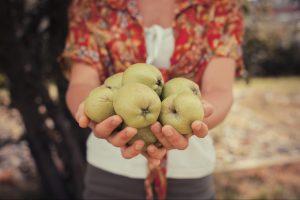 All Love Bears Fruit